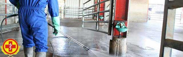 Услуга дезинфекции животноводческих комплексов и ферм