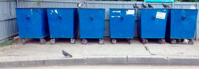 Дератизация контейнерных площадок